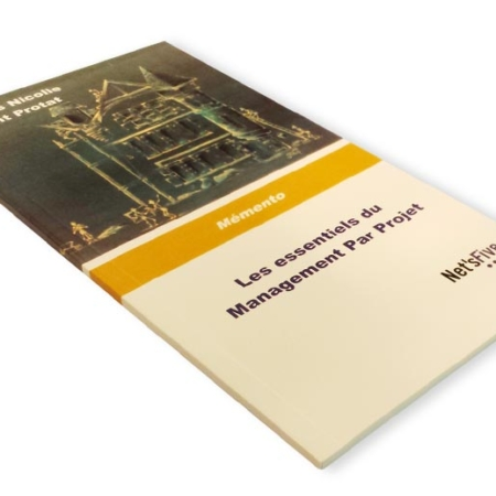 les-essentiels-du-management-par-projet-2-livre-nets-five